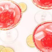 The Patron Hibiscus Margarita