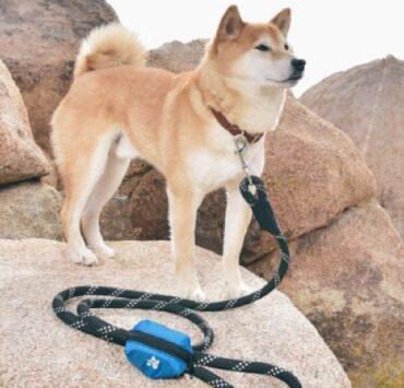 ZippyPaws Dog Poop Bag Holder Leash Attachment