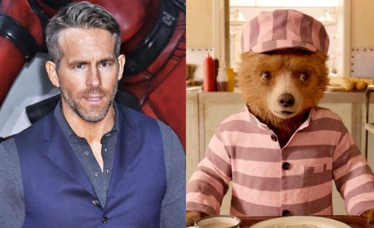 Ryan Reynolds Paddington Bear