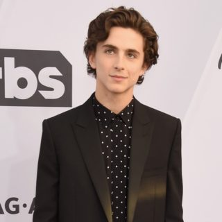 Timothée Chalamet 25th Annual Screen Actors Guild Awards - Arrivals