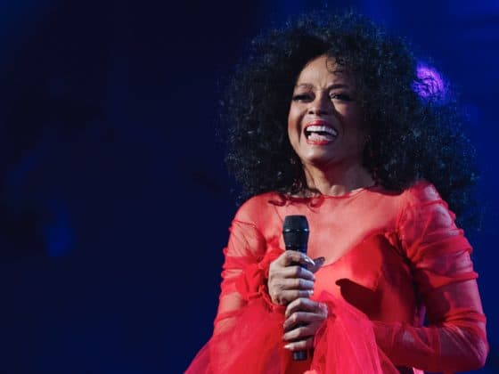 Diana Ross 61st Annual GRAMMY Awards - Inside
