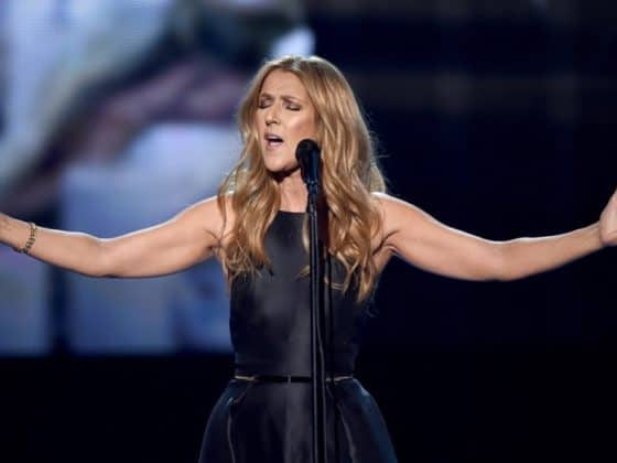 Celine Dion 2015 American Music Awards - Show