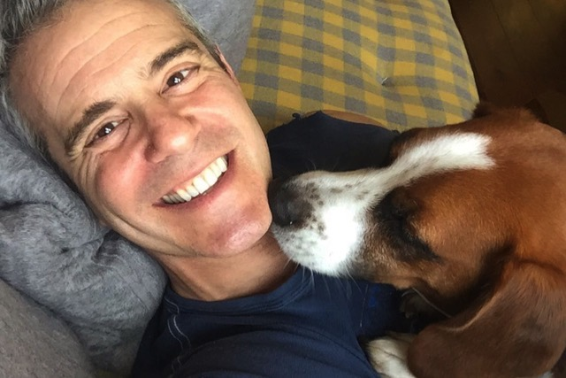 Andy Cohen Wacka