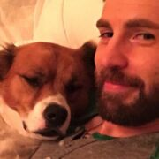Chris Evans and Dodger