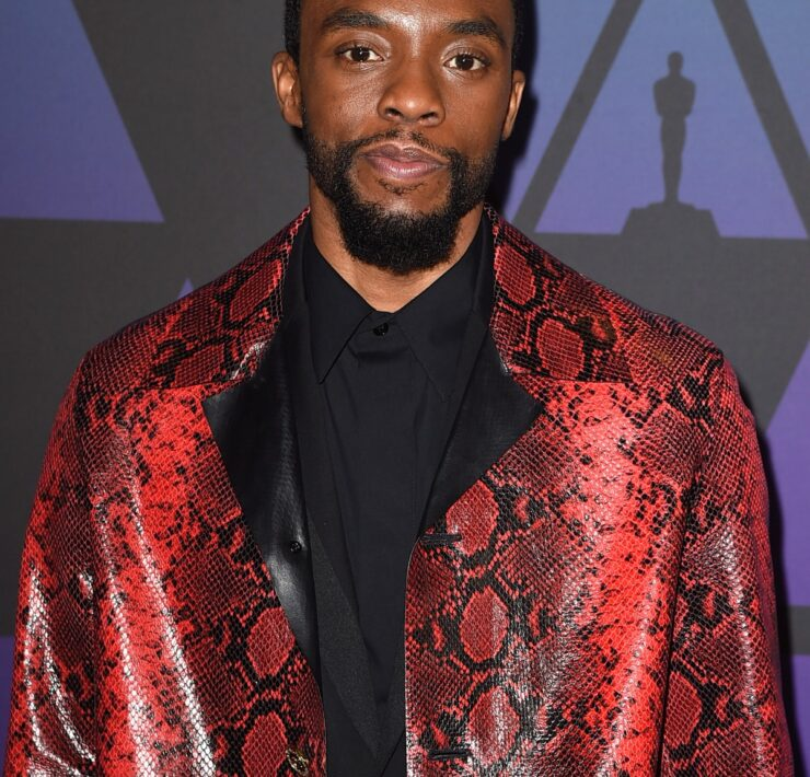 Chadwick Boseman Academy Of Motion Picture Arts And Sciences' 10th Annual Governors Awards - Arrivals