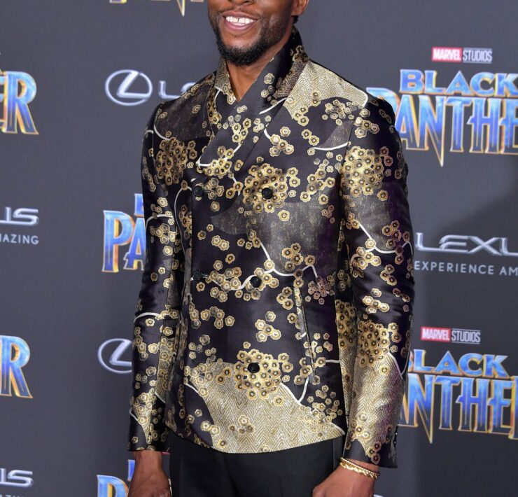 """Chadwick Boseman Premiere Of Disney And Marvel's """"Black Panther"""" - Arrivals"""
