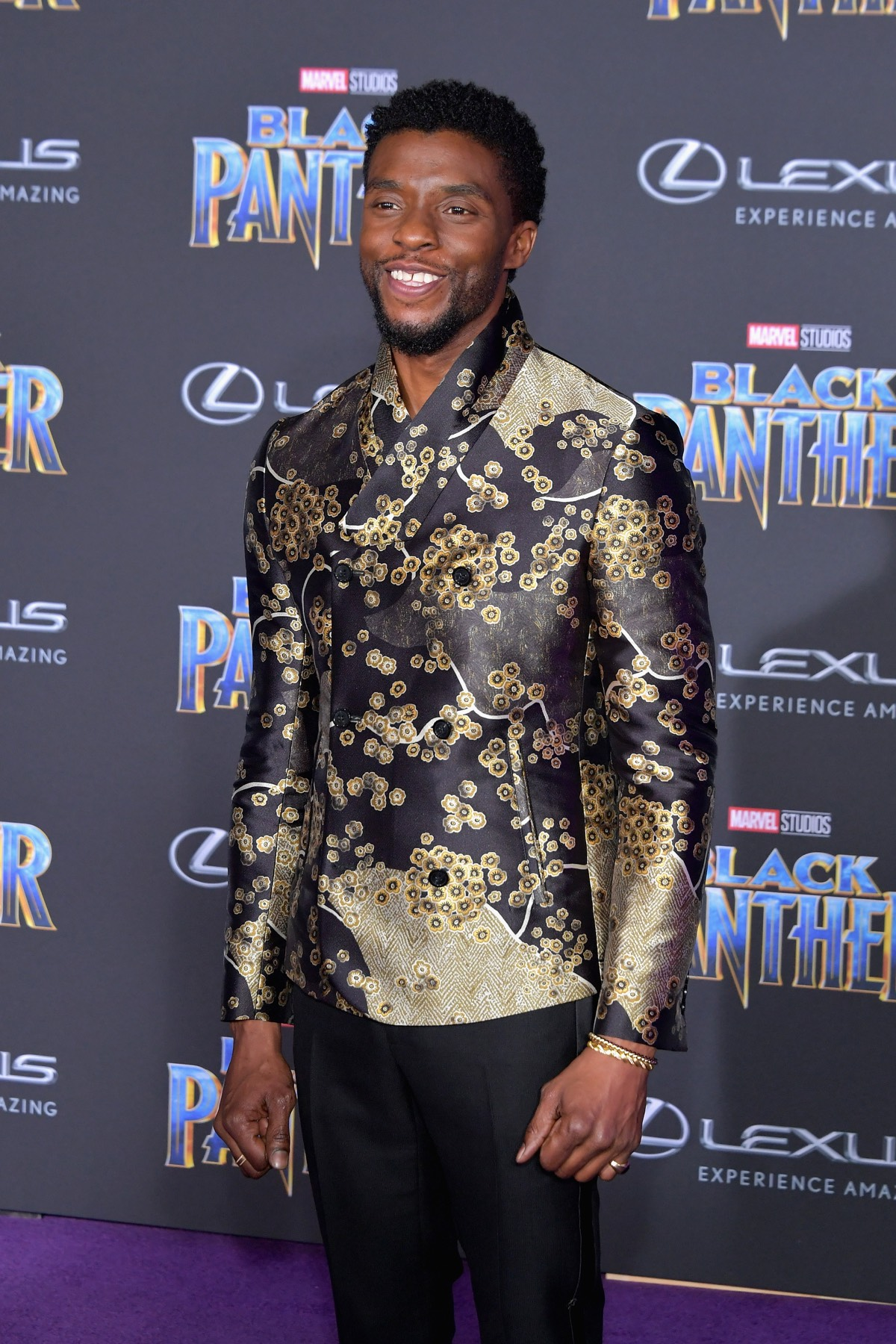 "Chadwick Boseman Premiere Of Disney And Marvel's ""Black Panther"" - Arrivals"