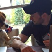 Chris Evans and his Dog Dodger