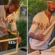 David Beckham Beekeeping