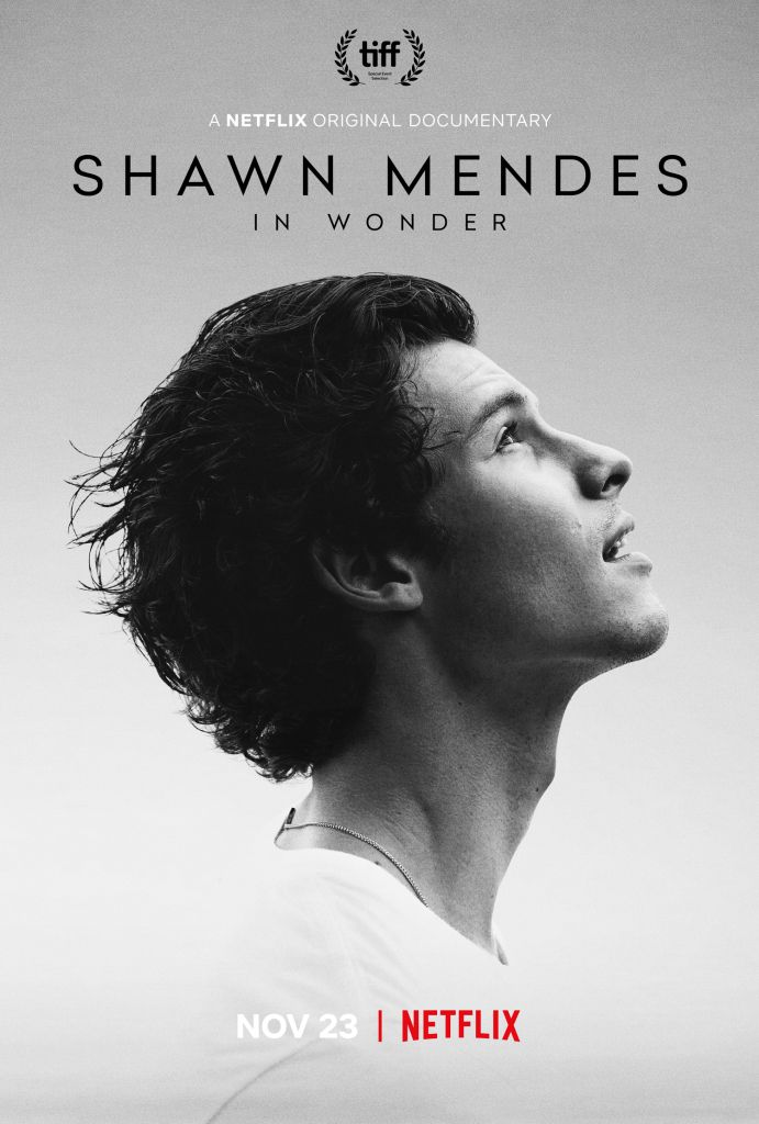 Shawn Mendes In Wonder Poster
