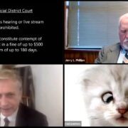 'I'm not a cat' lawyer Rod Ponton